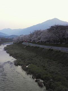 京都に居るのだった